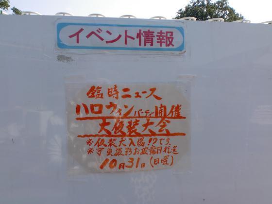 20101008CIMG4565.jpg