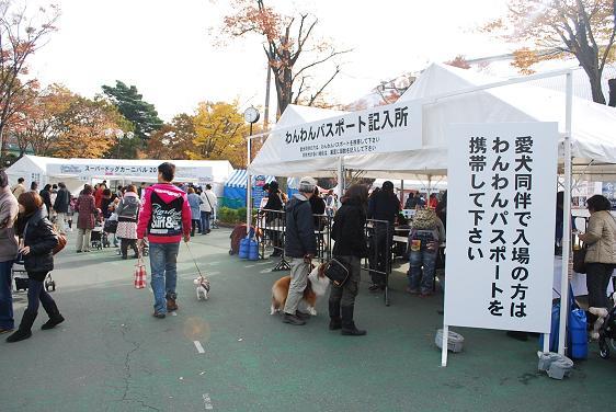 20101115DSC_4575.jpg