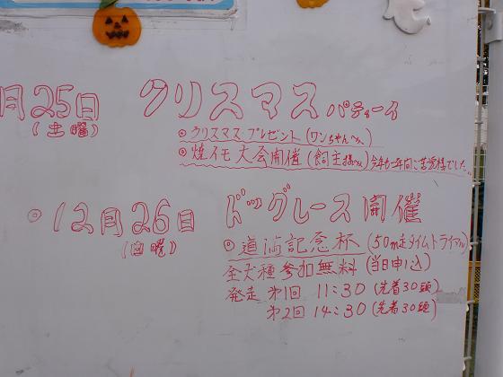 20101123CIMG4766.jpg