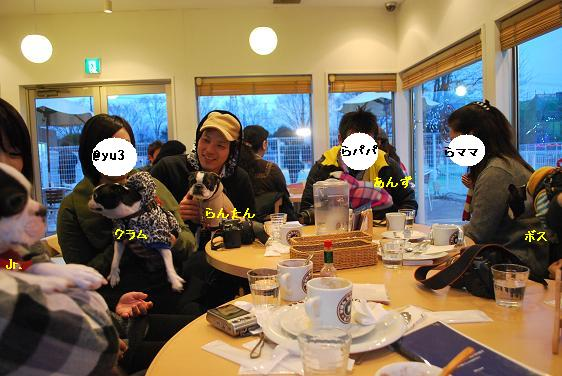 20110127DSC_7494.jpg