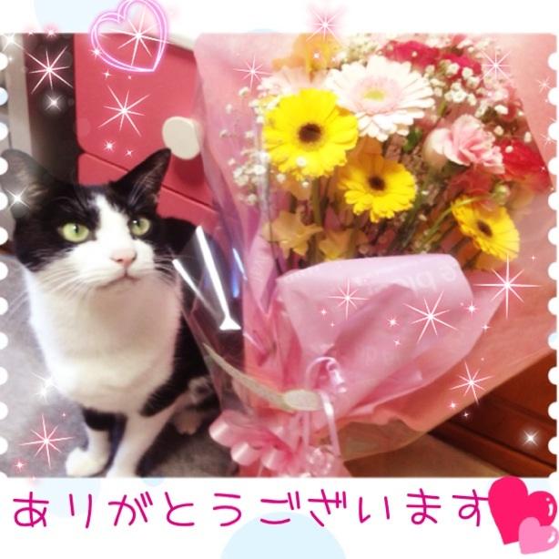 image_20130115194636.jpg
