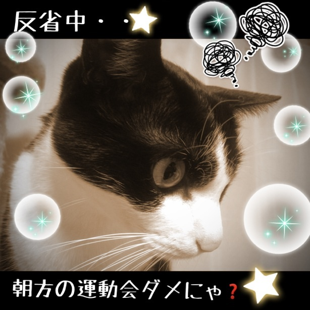 image_20130121202036.jpg