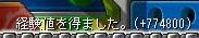 Maple110404_165514.jpg