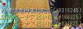 Maple110427_214350.jpg
