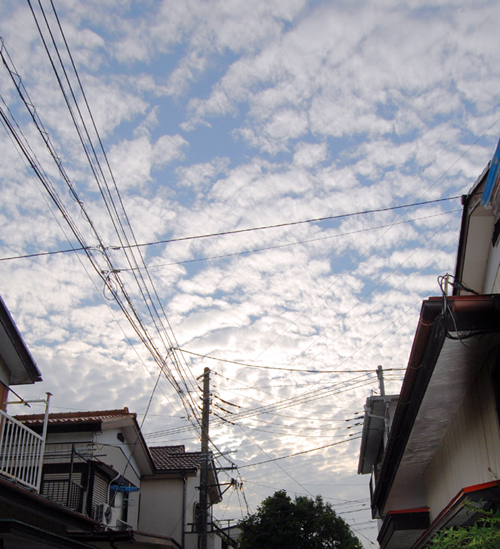 2010726_ph11.jpg