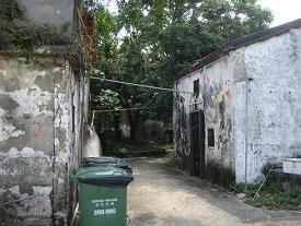 東平州島 (2)