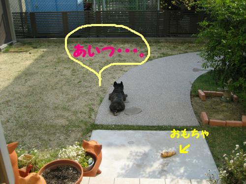 0430-2.jpg