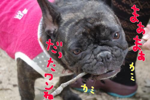 biwako-24.jpg