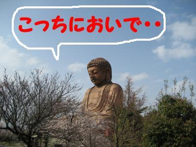 shuurakuen-2.jpg
