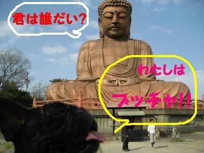 shuurakuen-3.jpg