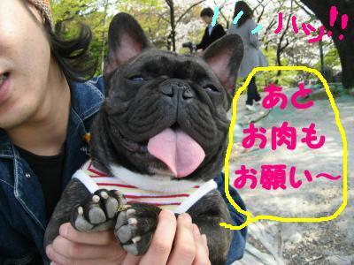 shuurakuen-6.jpg