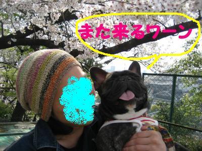 shuurakuen-8.jpg
