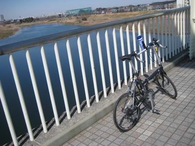 多摩サイ(水道橋)