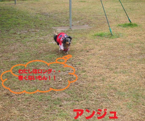 001_convert_20141222205338.jpg
