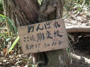 03munatukizaka1.jpg