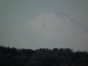 08miharasidaifuji1.jpg