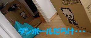 1_20110310191918.jpg