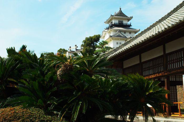 6御殿から見る城12-2-22-1