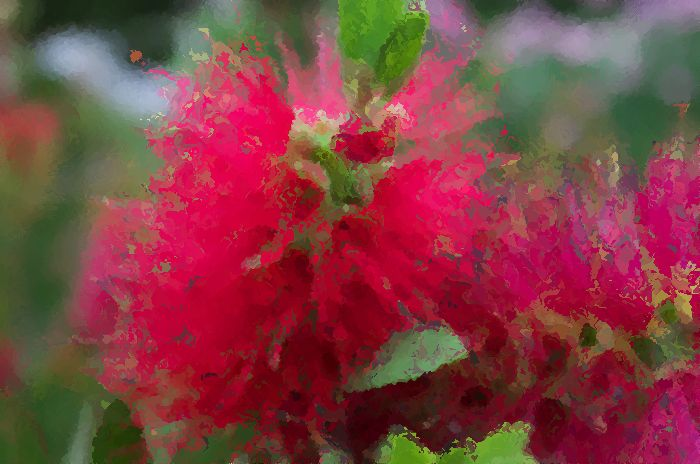 12-7-28-2ブラシの花をペイント風に