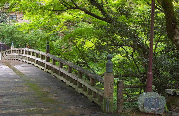 12-9-12-4こおろぎ橋