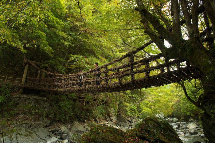 12-11-6-1奥二重かずら橋