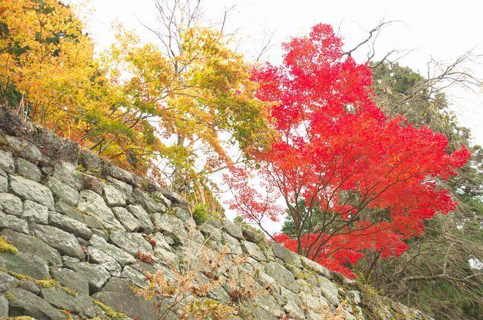 12-11-17-1岩村城跡