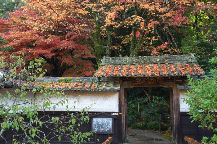12-11-20-1金剛輪寺