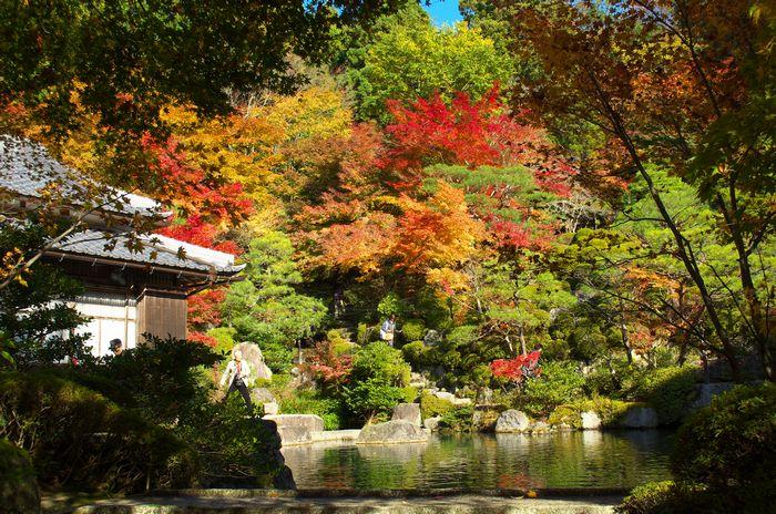 12-11-22-1百済寺
