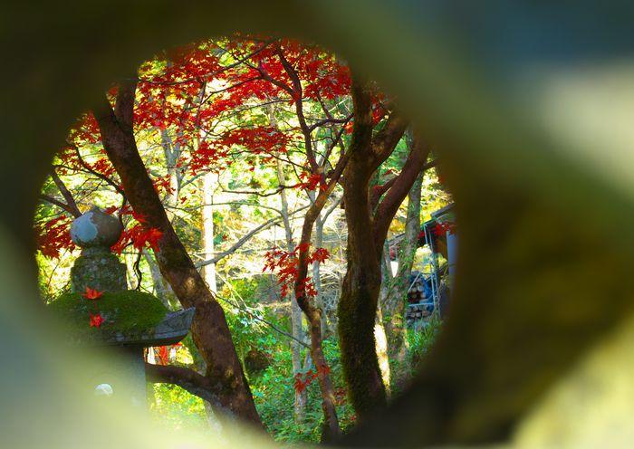 12-11-25-1横蔵寺