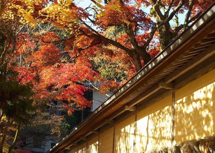 12-11-26-1華厳寺(谷汲山)