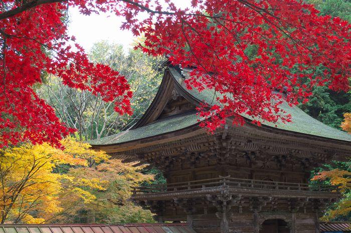 12-11-27-1大矢田神社