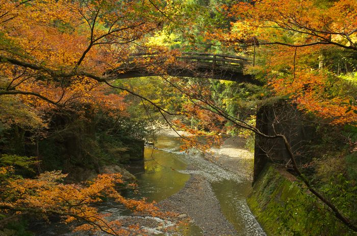 12-11-30-1滝ノ谷不動峡