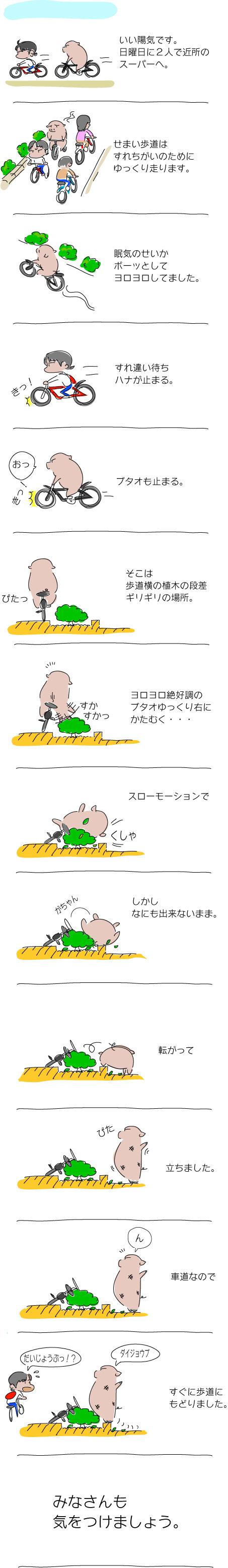 散歩でコケ
