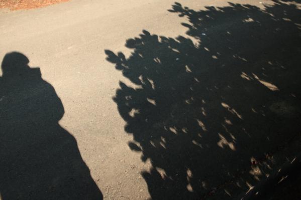 金冠日食木漏れ日