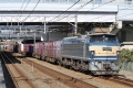 EF66-054-5088-2010-12-12.jpg