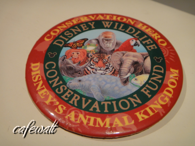 Disney Wildlife Conservation Fund