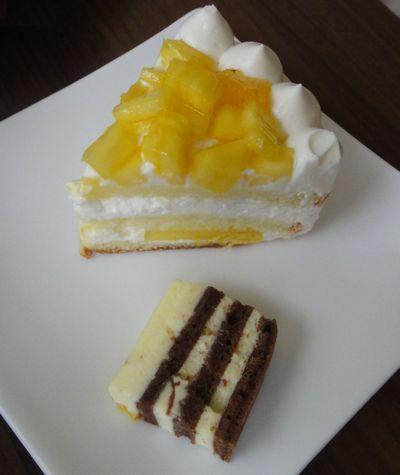 パピヨン ショートケーキ