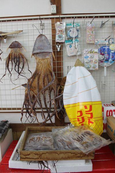味里 蛸凧一夜干し