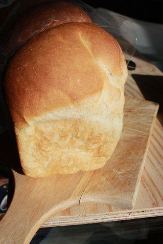 ぱんだパン 食パン 姿