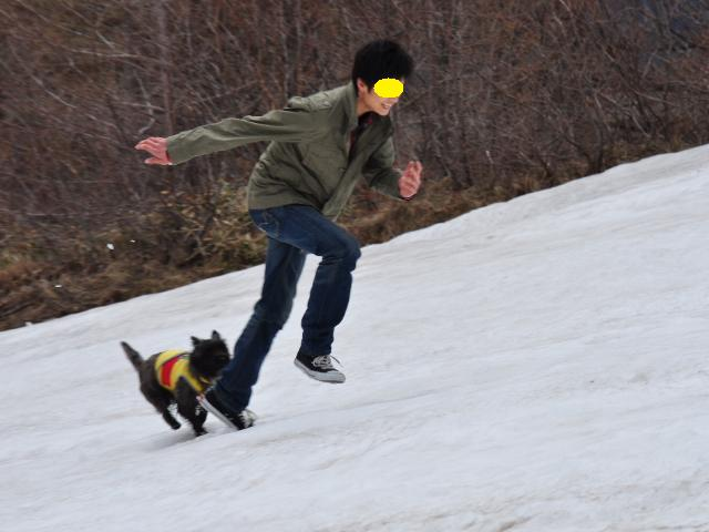 スキー場16