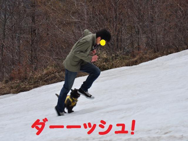 スキー場15