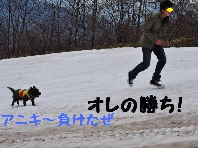 スキー場18