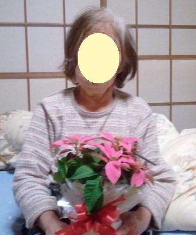 おばあちゃんとプリンセチア