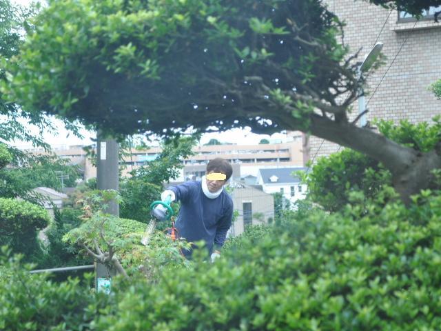 植木屋職人2