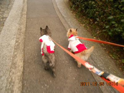 サンタでお散歩