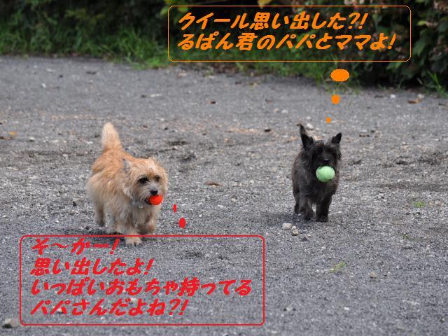 SSC_0442_20120918183904.jpg