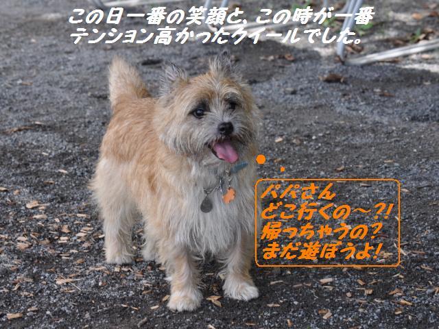 SSC_0451_20120918183902.jpg