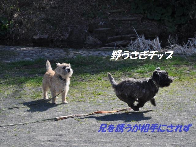 SSC_0825.jpg