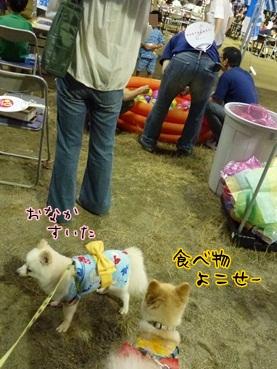 azukina120914.jpg