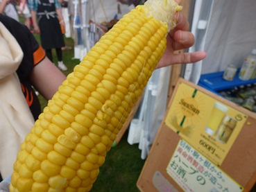 corn120714.jpg